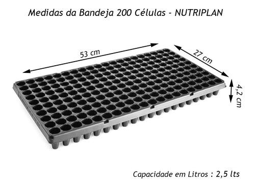 bandeja mudas 200 células - sementeira hortaliças - 10 und