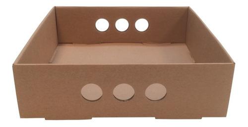 bandeja para desayuno o picadas, cartón rígido 25x25x07 x10u