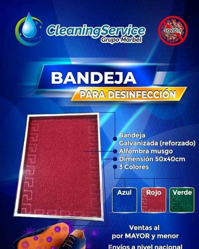 bandeja para desinfección, alfombra