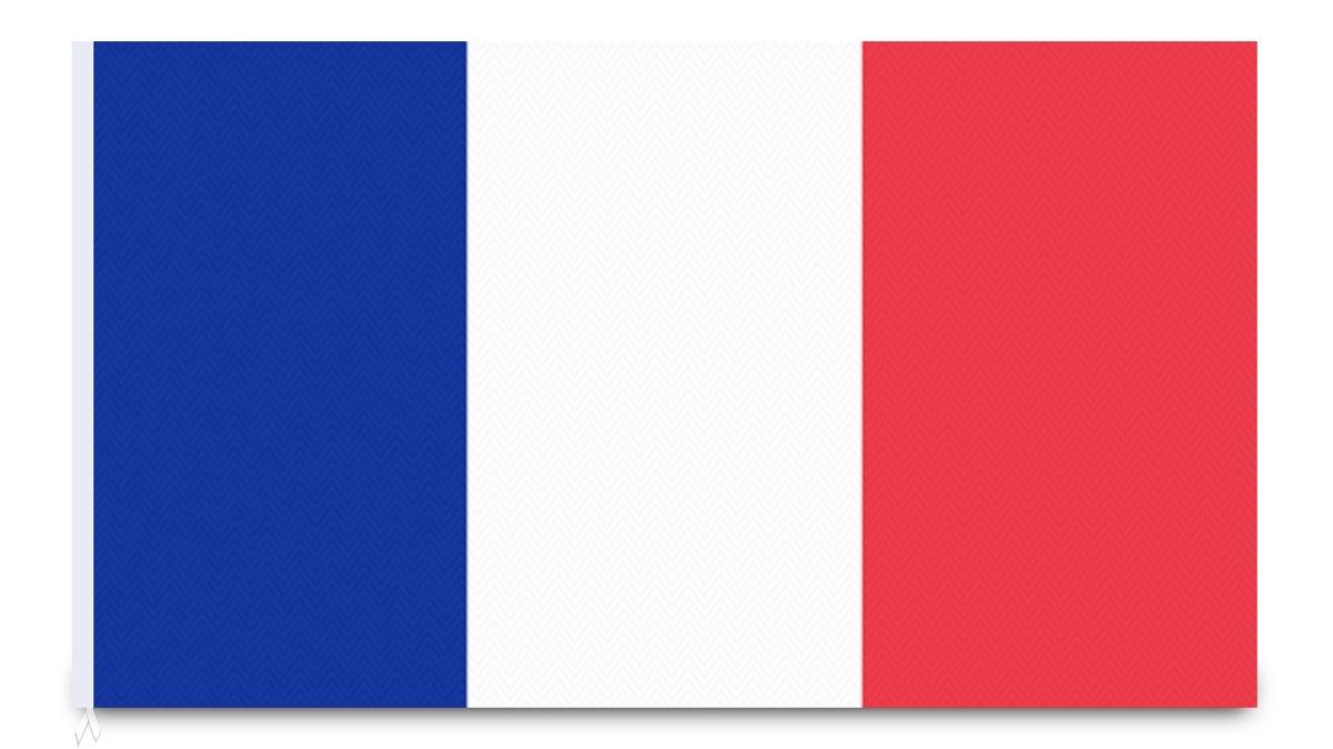 Bandera De Francia Banderas De Nailon Eventos Y