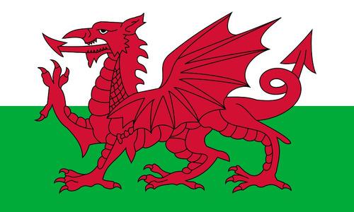 bandera gales wales 90 x150cms,polyester