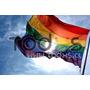 Bandera Arcoiris Gay Lesbica Trans Y Bisexual