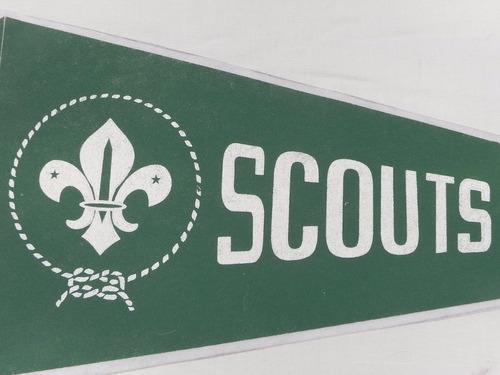 banderin scouts guias y scout de chile