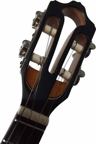 banjo luthier ariass imbuia