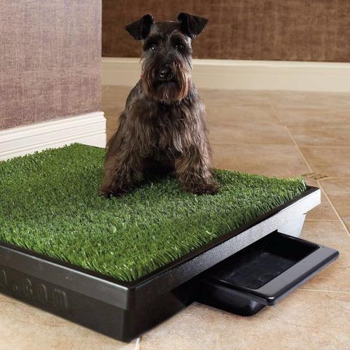baño ecologico grande con bandeja perros + envio gratis
