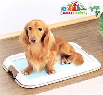 baño ecológico para perros - pet toilet large