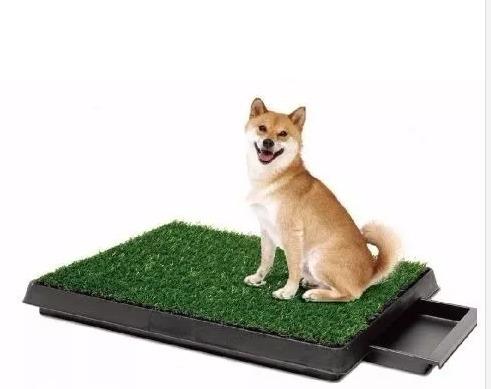 baño ecológico portáble con bandeja mascotas perros gatos