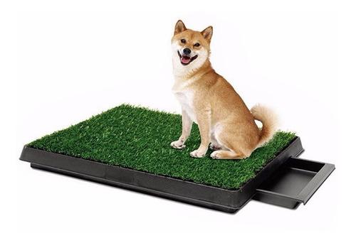 baño ecologico portatil grande con bandeja perros potty pad