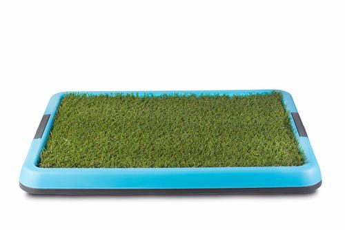baño ecologico portatil mediano  para perros + aqui pipi