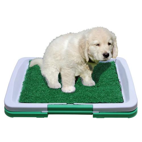 baño perros puppy potty pad ecologico mascotas gatos