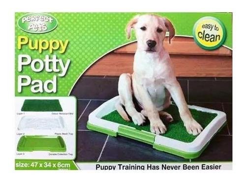 baño sanitario ecologico perros y gatos / entregas stgo