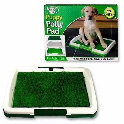 baño sanitario entrenador perros y gatos pequeños
