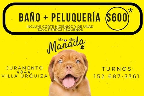 baño y peluquería canina en villa urquiza
