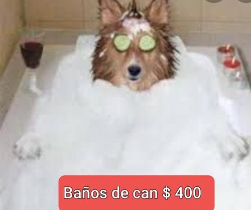 baños de can
