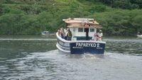barco traineira em ipê ¿ casco injetado