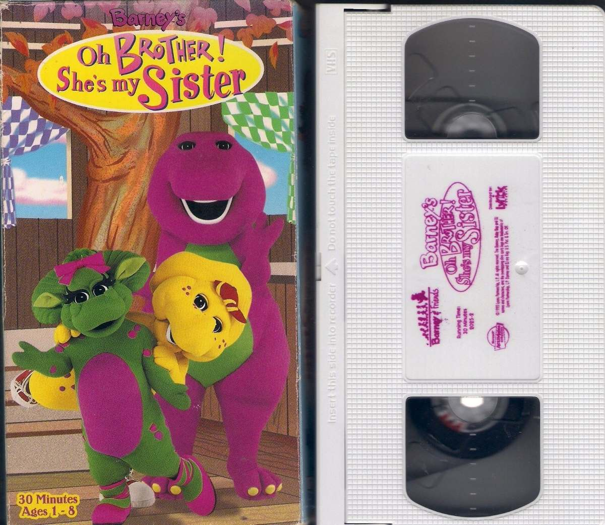 Barney S Oh Brother She S My Sister Ages 1-8 Vhs Amerciano