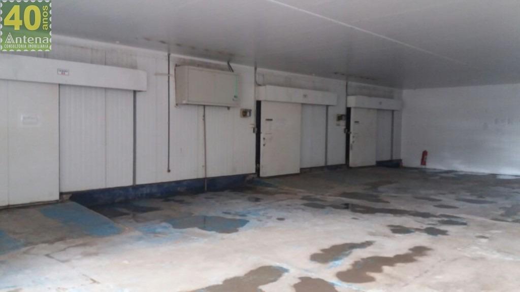 barracão para alugar - 00365.004