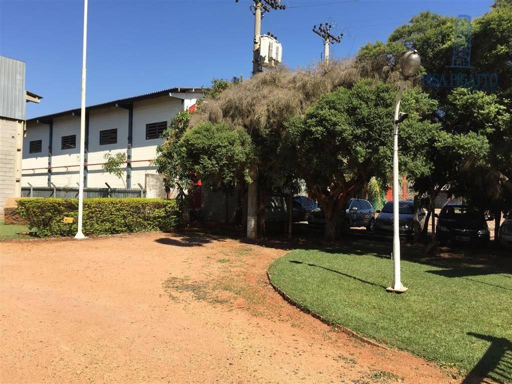 barracão para alugar, 428 m² por r$ 6.000,00/mês - betel - paulínia/sp - ba0052