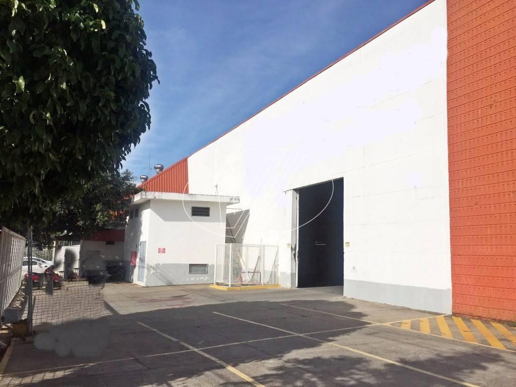 barracão para aluguel em jardim santa genebra - ba228033