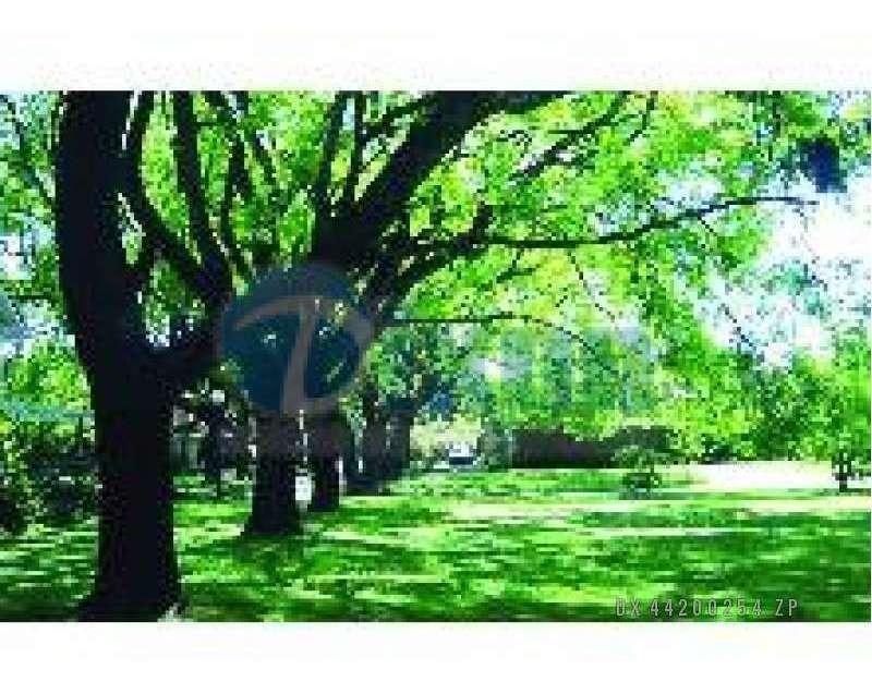 barrio cerrado villa bertha - lote venta usd 155.000