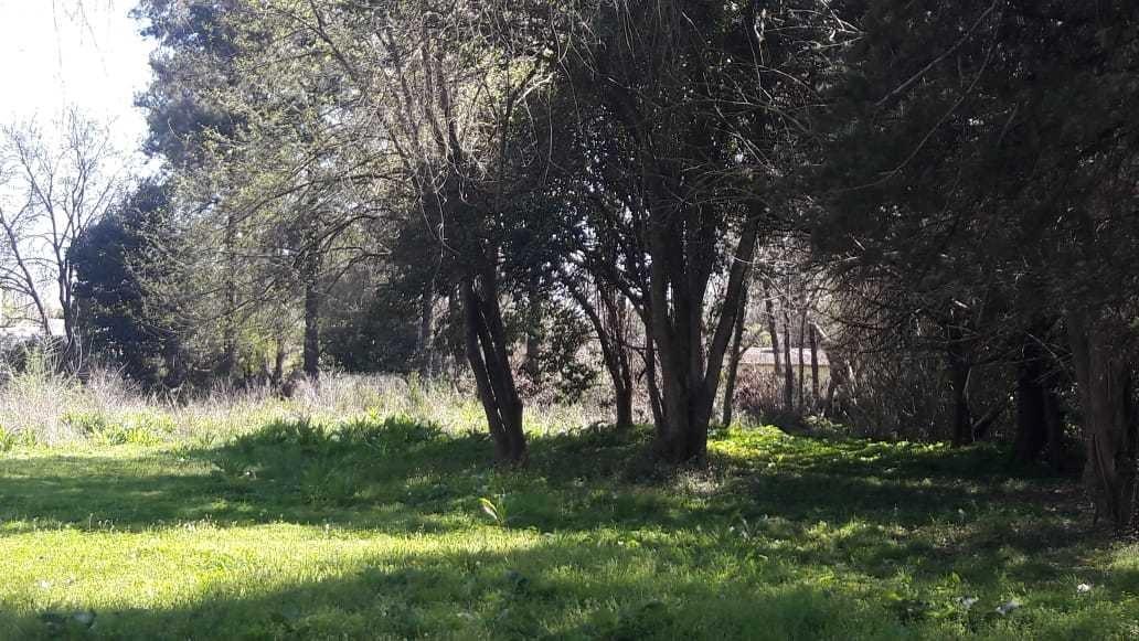barrio freixas - dos terrenos