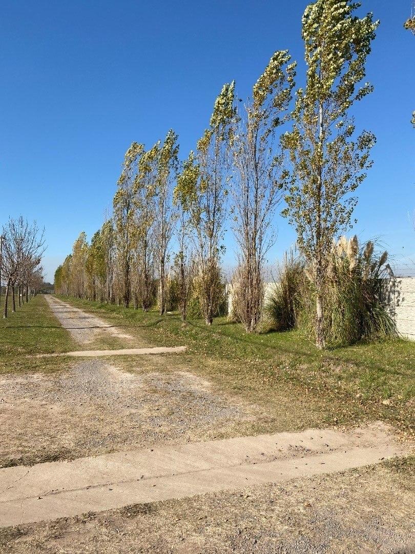 barrio las casuarinas ibarlucea - terreno sobre avenida logaritmo