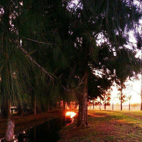 barrio parque irizar - pilar - terreno