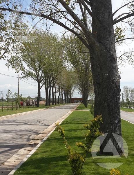 barrio privado la alameda - canning