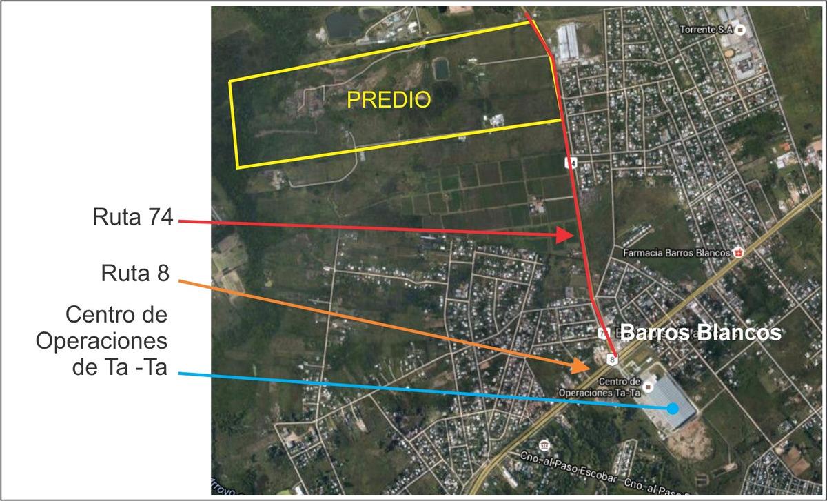 barros blancos - predio de 36 ha en ruta 74 próx. ruta 8