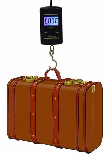 bascula colgante digital portatil maleta equipage 20g - 40kg