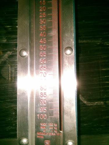 báscula colgar uso rudo (romana) 100kg