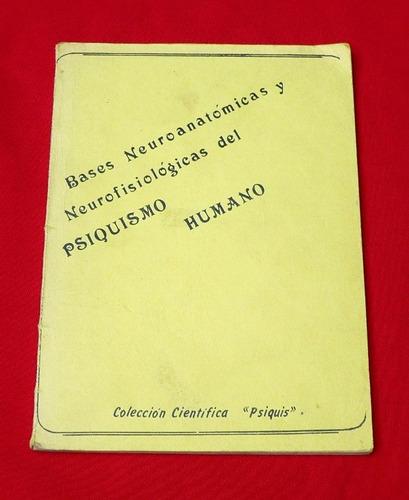 bases neuroanatómicas neurofisiológicas del psiquismo humano