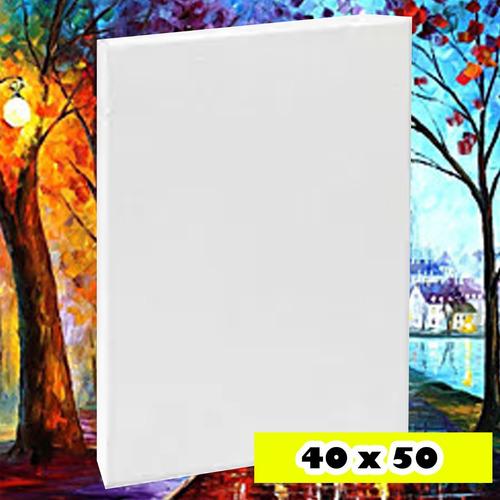bastidor lienzo 40 x 50 listo para pintar