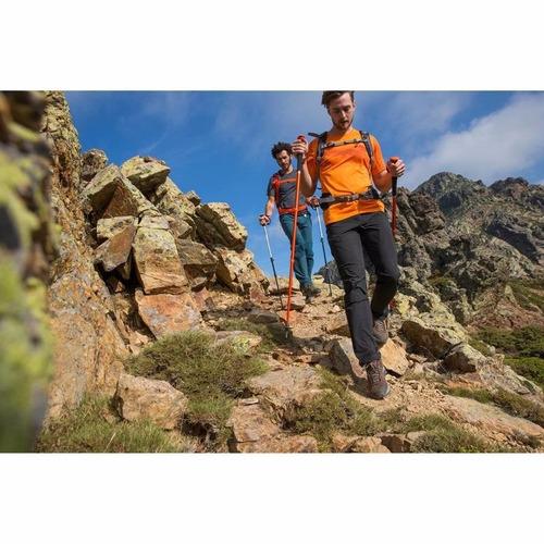 bastón de aluminio travesía / trekking arpenaz 100 quechua