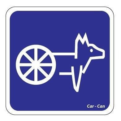 baston para perro ciego invidente halo  aureola car can