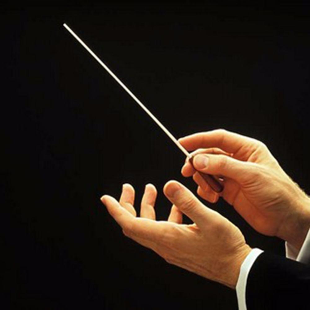 batuta-de-fibra-maestro-regentes-musicos-orquestras-D_NQ_NP_708515-MLB25260620358_012017-F