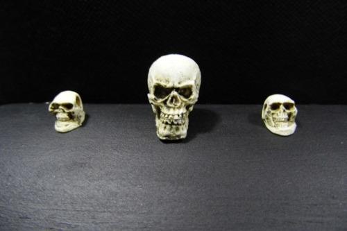 baúl cráneos chico