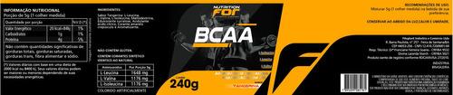 bcaa  pó - 240g kit 2 potes original nutrition for premiun