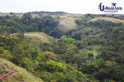 beautiful property of 7 hectares in rio hato, anton ¿ $630,0