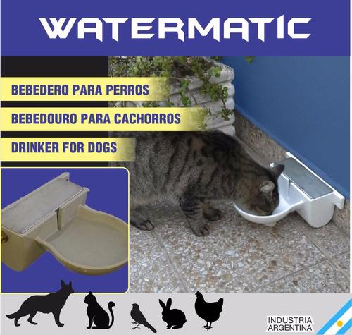 bebedero automatico para perros