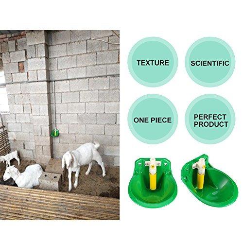 bebedero automático tazas de agua cuenco para ganado ovino