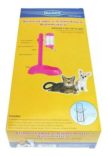 bebedouro comedouro cães gatos bico bilha lambe chalesco