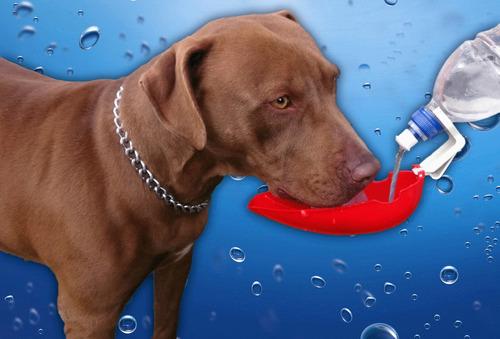 bebedouro portátil dogdrink jetaplast 2x1 para cão amarelo
