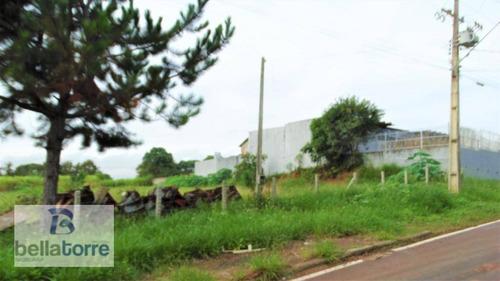 bela área industrial/comercial com 3.500m² em araucária px brafer - te0257