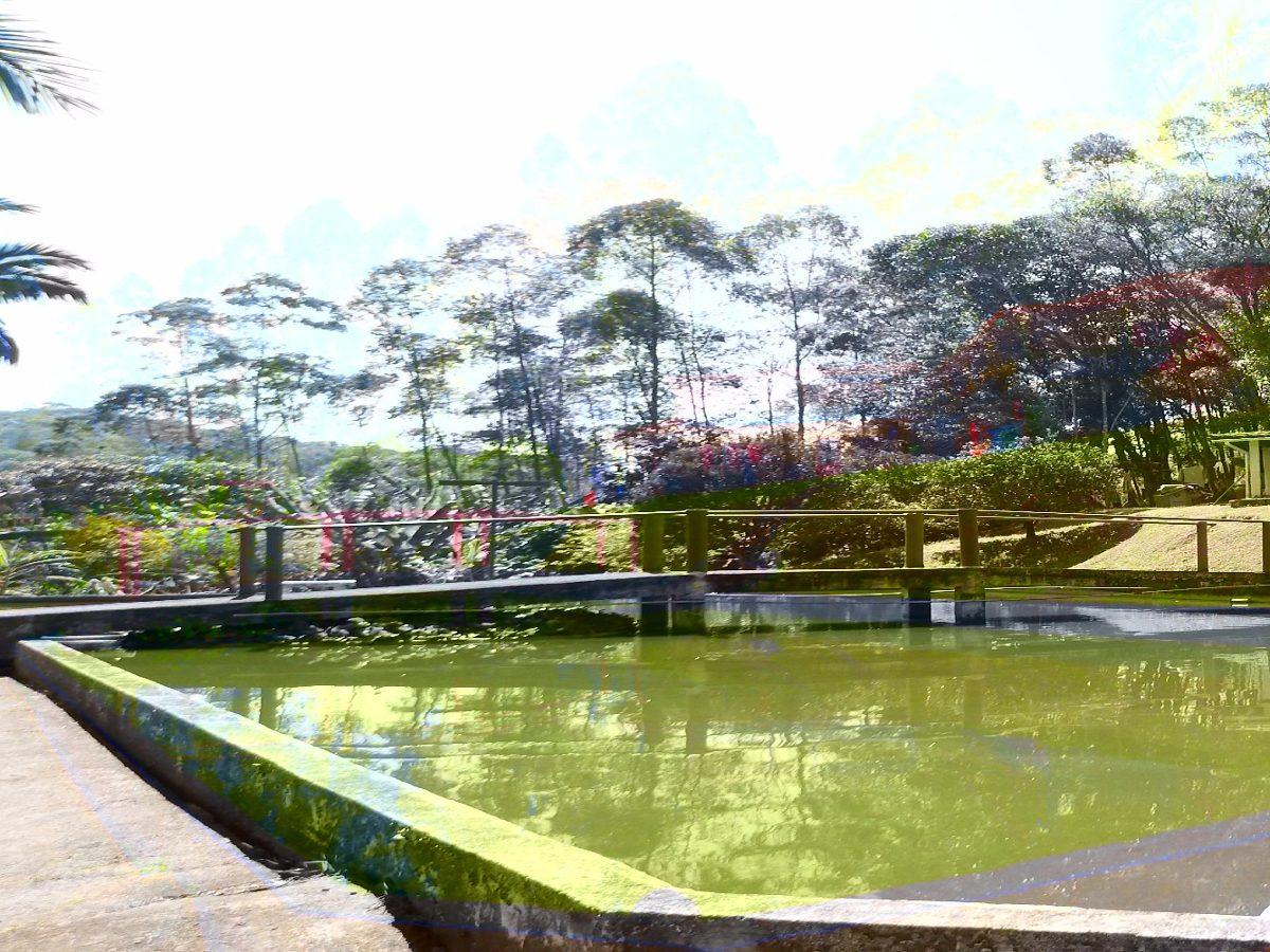 belíssima chácara com lago piscina bem localizada