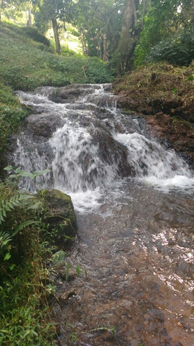 belíssimo sítio com 11 alqueires contém cachoeira 2 lagos