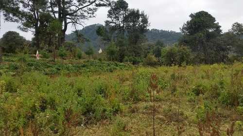 bello terreno en pipioltepec