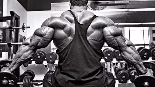 best gainer 2 kilos ganancia muscular a 90 soles