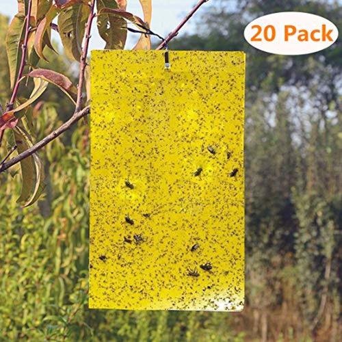 besttrap 20-pack yellow sticky traps flying