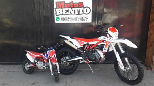 beta 300 x trainer